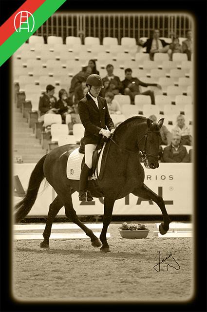 caballos18